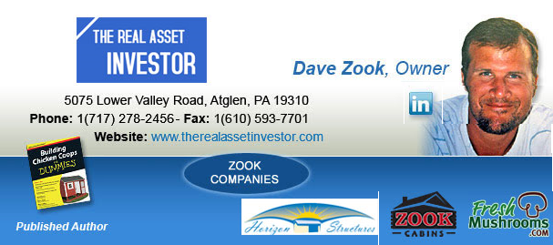 dave zook